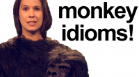How to Pronounce MONKEY IDIOMS!