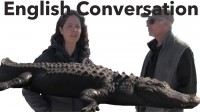 English Conversation – Learn American English with ALLIGATORS!