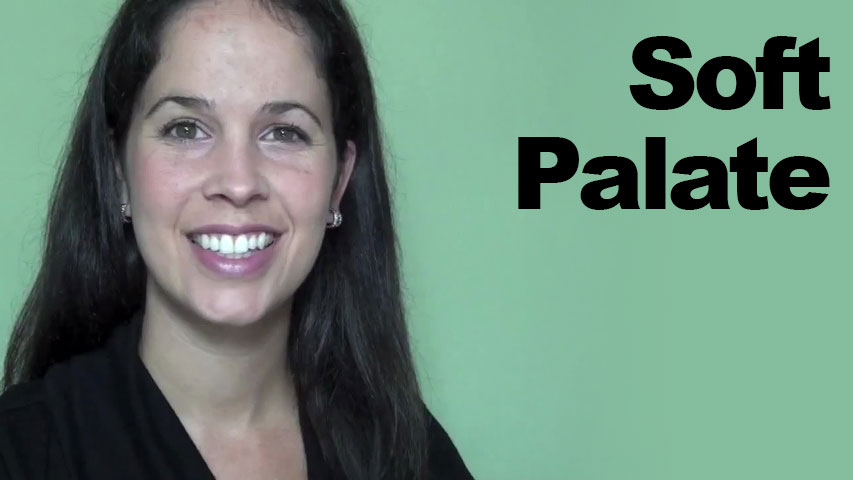 Soft Palate And Other Parts Of The Mouth Rachel S English