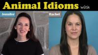 435 - Animal-Idioms-Thumb